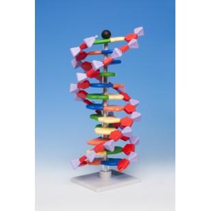 Model DNK - 12 slojeva